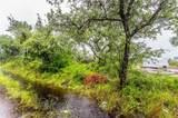 1325 Longoria Road - Photo 1