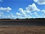 0000 Buddy Ganem (Fm 3239) 8.698 Acres - Photo 15