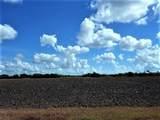 0000 Buddy Ganem (Fm 3239) 8.698 Acres - Photo 17