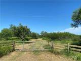 Tract 5 County Road 2431 - Photo 1