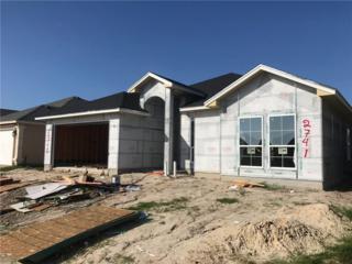 2741 Gold Rush Lane, Corpus Christi, TX 78410 (MLS #309192) :: Desi Laurel & Associates