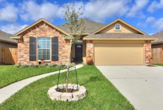 3213 Wood Creek Dr, Corpus Christi, TX 78410 (MLS #309303) :: Desi Laurel & Associates