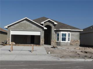3114 Shallow Creek, Corpus Christi, TX 78410 (MLS #309381) :: Desi Laurel & Associates