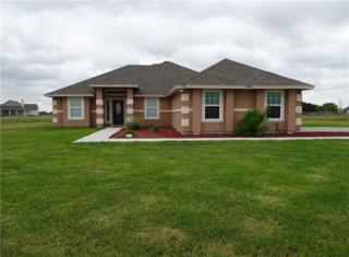 4486 Banquete Dr, Banquete, TX 78339 (MLS #312111) :: Better Homes and Gardens Real Estate Bradfield Properties