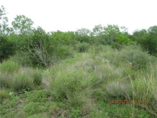 0 Cr. 210, Benavides, TX 78341 (MLS #312114) :: Better Homes and Gardens Real Estate Bradfield Properties