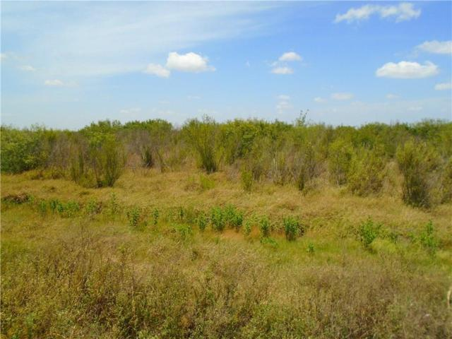 0000 Cr Road 45 & State Hwy 286, Corpus Christi, TX 78347 (MLS #300942) :: KM Premier Real Estate