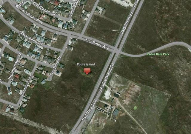 9A/19 S Padre Island, Corpus Christi, TX 78418 (MLS #312768) :: Better Homes and Gardens Real Estate Bradfield Properties