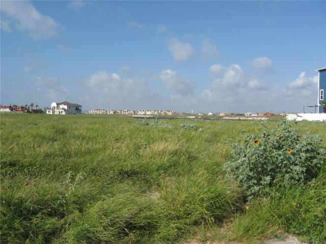 14733 Running Light Dr, Corpus Christi, TX 78418 (MLS #314022) :: Desi Laurel Real Estate Group