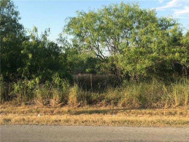 158 Gallant Fox Drive, Sandia, TX 78383 (MLS #315245) :: KM Premier Real Estate