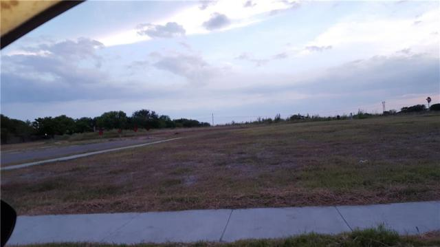 11509 Saspamco Creek Dr, Corpus Christi, TX 78410 (MLS #316367) :: Better Homes and Gardens Real Estate Bradfield Properties