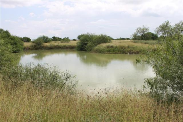 - County Road 55 @ Cr 6, Corpus Christi, TX 78347 (MLS #319797) :: Better Homes and Gardens Real Estate Bradfield Properties