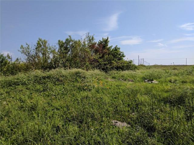 00000 Palmira, Corpus Christi, TX 78418 (MLS #322503) :: Better Homes and Gardens Real Estate Bradfield Properties