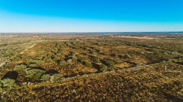 0000 Cr 121 Cr, Beeville, TX 78102 (MLS #325602) :: Better Homes and Gardens Real Estate Bradfield Properties