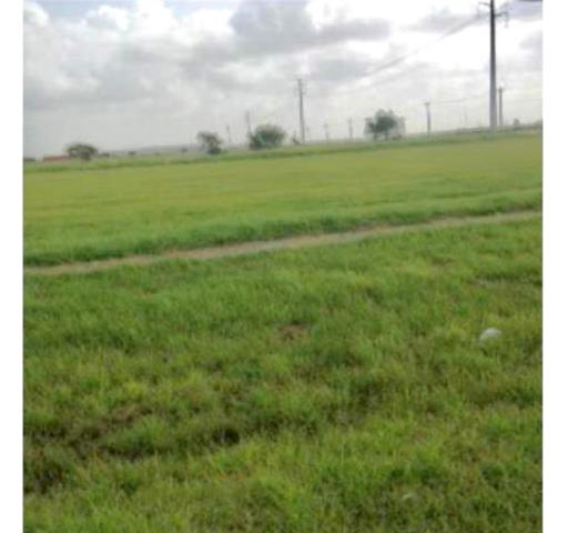 0 County Rd 2004 Dr, Portland, TX 78374 (MLS #326493) :: Better Homes and Gardens Real Estate Bradfield Properties