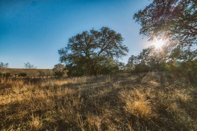 0 County Road 124 & County Road, Beeville, TX 78102 (MLS #327363) :: Desi Laurel Real Estate Group