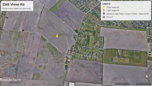 2345 Violet, Corpus Christi, TX 78410 (MLS #327883) :: Desi Laurel Real Estate Group