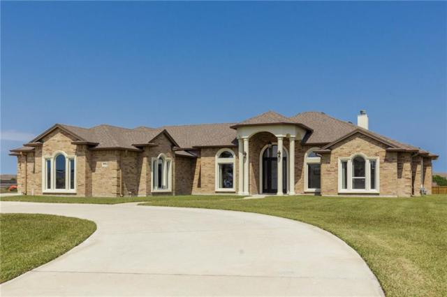 8538 King River Ct, Corpus Christi, TX 78414 (MLS #327973) :: Kristen Gilstrap Team
