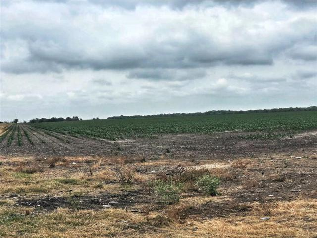 0 County Rd 1694, Odem, TX 78370 (MLS #328443) :: Better Homes and Gardens Real Estate Bradfield Properties