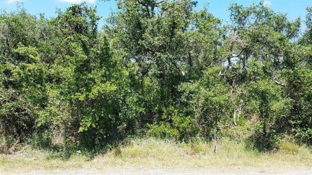 xxx Vineyard, Ingleside, TX 78362 (MLS #328830) :: RE/MAX Elite Corpus Christi