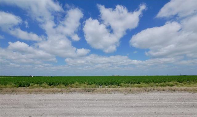 0 County Rd 49-Cr 22, Corpus Christi, TX 78415 (MLS #329848) :: Better Homes and Gardens Real Estate Bradfield Properties