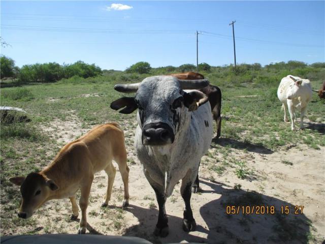 8592 Hwy 339, Freer, TX 78357 (MLS #329851) :: RE/MAX Elite Corpus Christi