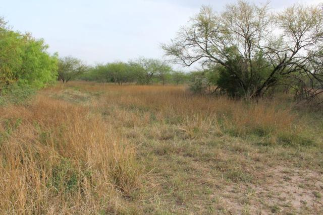 00 County Rd 147, George West, TX 78022 (MLS #329917) :: Better Homes and Gardens Real Estate Bradfield Properties