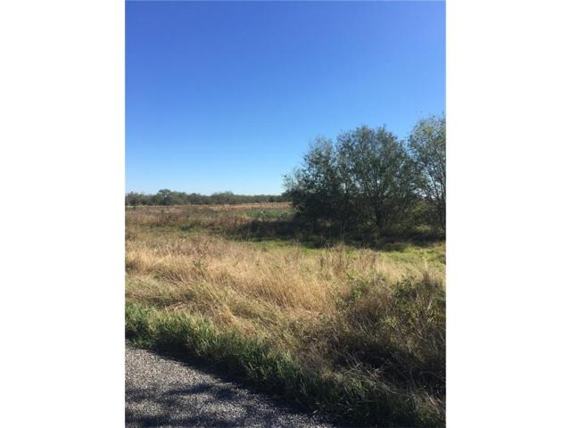 8685 State Hwy 359, Skidmore, TX 78389 (MLS #330042) :: RE/MAX Elite Corpus Christi