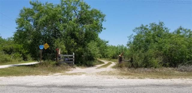 4628 Country Road 239, Orange Grove, TX 78372 (MLS #330420) :: Kristen Gilstrap Team