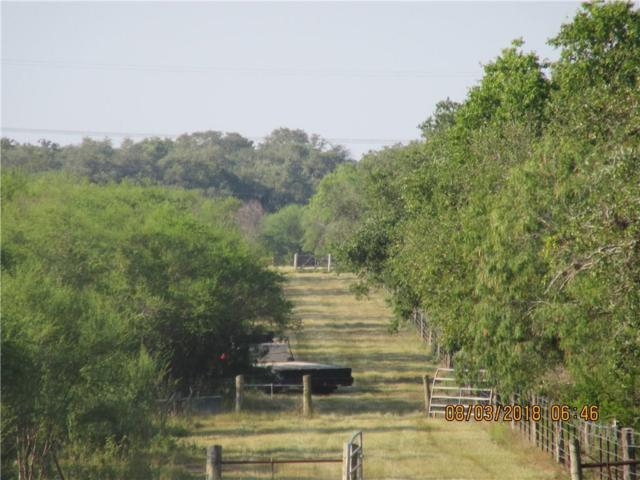 57 Diebel Road, Goliad, TX 77963 (MLS #332568) :: Desi Laurel & Associates