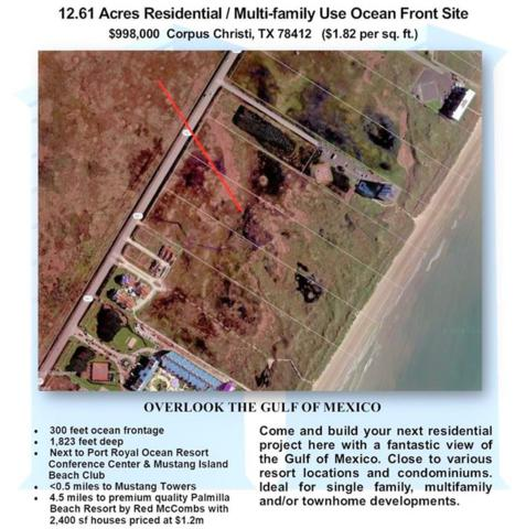 6189 State Highway 361, Port Aransas, TX 78373 (MLS #333639) :: Desi Laurel & Associates