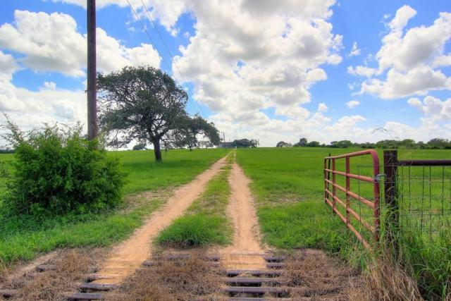2281 County Road 502, Beeville, TX 78102 (MLS #335508) :: RE/MAX Elite Corpus Christi