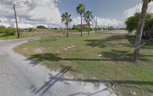 424 Bridgeport Ave, Corpus Christi, TX 78402 (MLS #335778) :: Desi Laurel & Associates