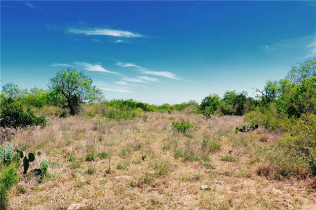 000 Dirty Shame Road, Other, TX 78014 (MLS #336085) :: Kristen Gilstrap Team