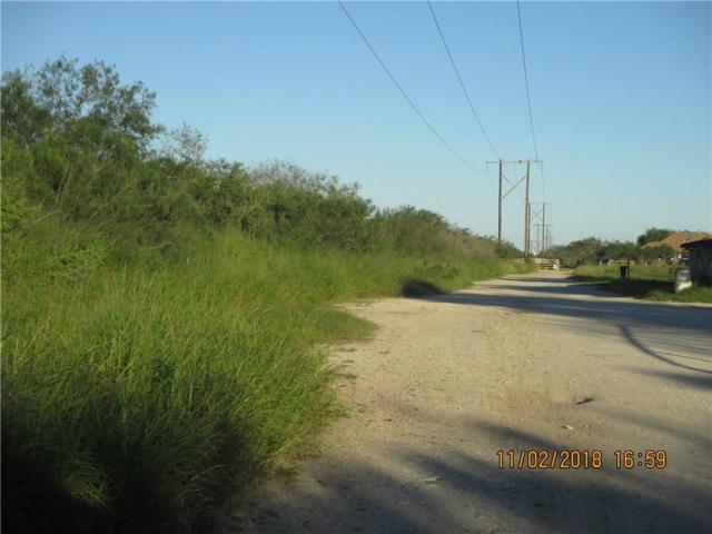 0 Cr. 111 Cr, Alice, TX 78332 (MLS #337226) :: RE/MAX Elite Corpus Christi