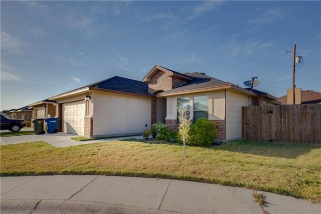 7226 Lake Serenity Dr, Corpus Christi, TX 78414 (MLS #337814) :: Five Doors Real Estate
