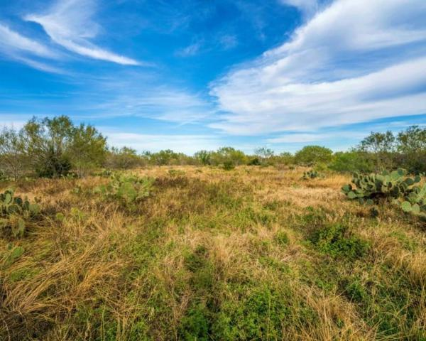 0000 Cr 799, George West, TX 78022 (MLS #337988) :: Better Homes and Gardens Real Estate Bradfield Properties