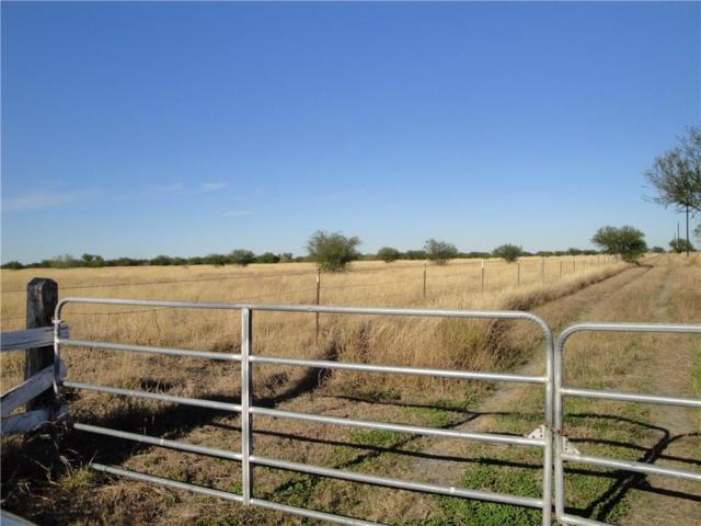 23-24 tr County Rd 10, Mathis, TX 78368 (MLS #338020) :: Five Doors Real Estate