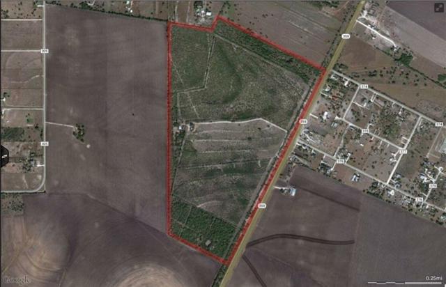 0 Hwy 359 Hwy, Orange Grove, TX 78372 (MLS #338644) :: RE/MAX Elite Corpus Christi
