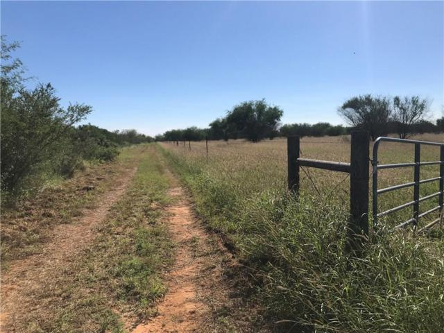 211 Cr 211, Concepcion, TX 78349 (MLS #339396) :: RE/MAX Elite Corpus Christi