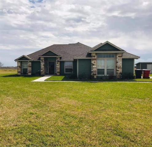 332 County Road 3101, Orange Grove, TX 78372 (MLS #339596) :: Desi Laurel & Associates