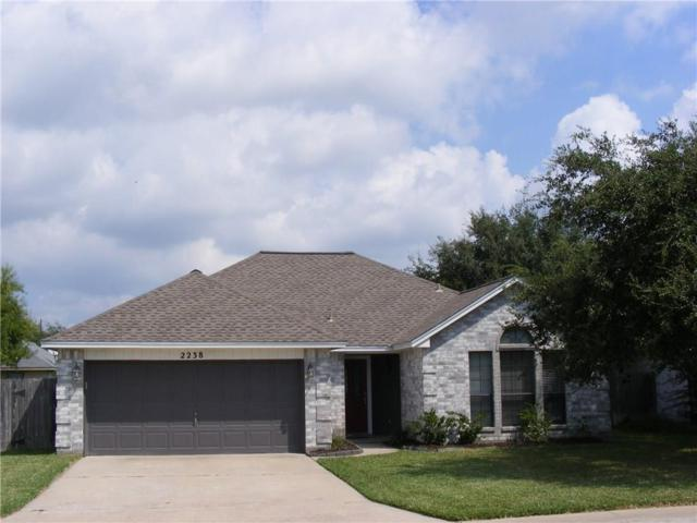 2238 Sunset Cliffs Dr, Ingleside, TX 78362 (MLS #340190) :: Desi Laurel & Associates