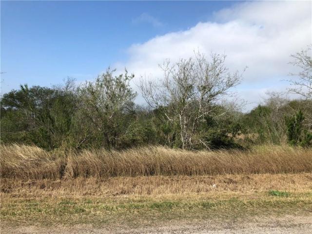 Lot 3 Cr 3073, Orange Grove, TX 78372 (MLS #340403) :: Desi Laurel & Associates