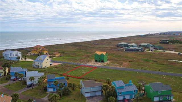 122 Beach View Dr, Corpus Christi, TX 78373 (MLS #340579) :: Desi Laurel Real Estate Group