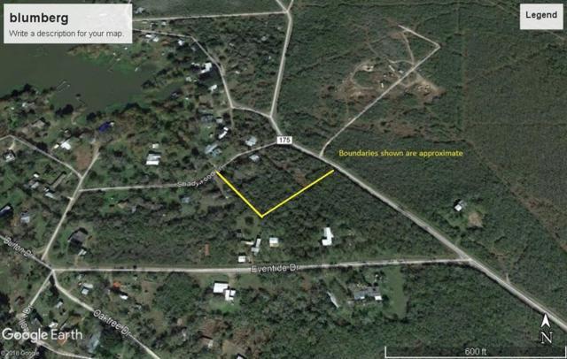 TBD Cr 175, Sandia, TX 78383 (MLS #340635) :: South Coast Real Estate, LLC