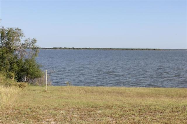 Lot 1 Vista Fina Drive, Sandia, TX 78383 (MLS #342502) :: Desi Laurel Real Estate Group