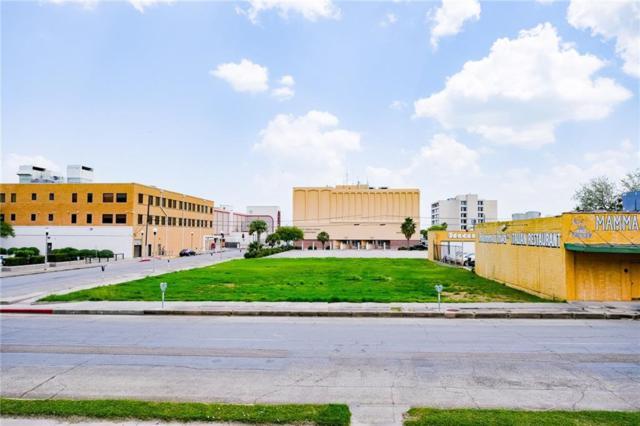 441 John Sartain St, Corpus Christi, TX 78401 (MLS #342613) :: Desi Laurel Real Estate Group