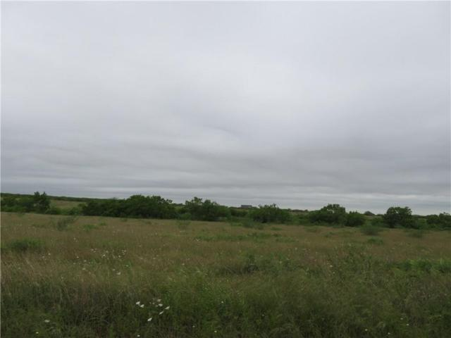 18A County Road 222, Orange Grove, TX 78372 (MLS #342771) :: Desi Laurel & Associates