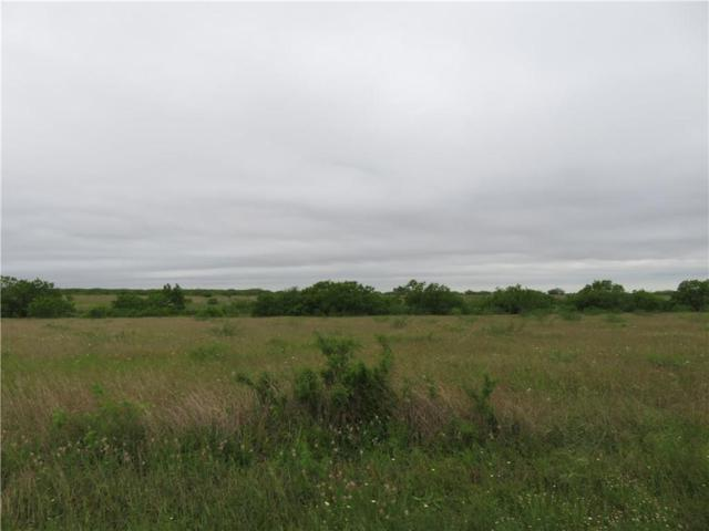 19A County Road 222, Orange Grove, TX 78372 (MLS #342773) :: Desi Laurel & Associates