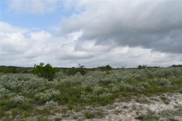00 Hidden Creek Drive, Orange Grove, TX 78372 (MLS #344026) :: South Coast Real Estate, LLC