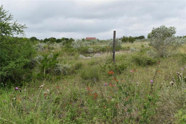 00 Hidden Creek Dr, Orange Grove, TX 78372 (MLS #344031) :: Jaci-O Group   Corpus Christi Realty Group